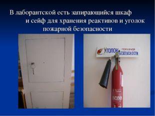 В лаборантской есть запирающийся шкаф и сейф для хранения реактивов и уголок