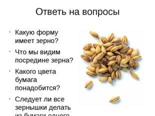 Ответь на вопросы Какую форму имеет зерно? Что мы видим посредине зерна? Како
