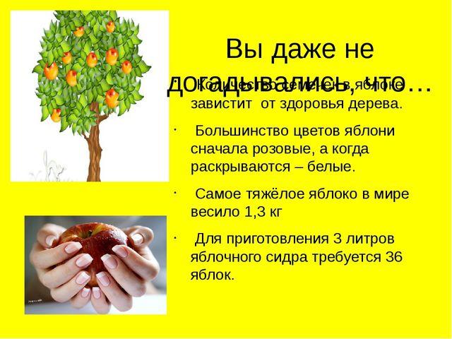 Количество семечек в яблоке завистит от здоровья дерева. Большинство цветов...