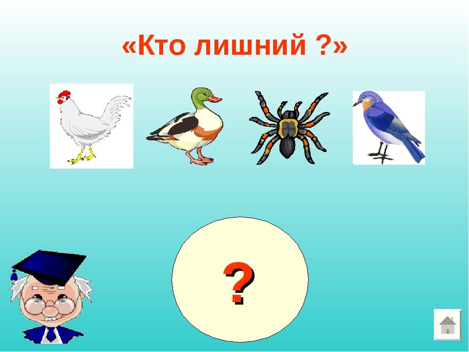 «Кто лишний ?» ?