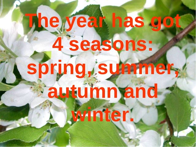 The year has got 4 seasons: spring, summer, autumn and winter.