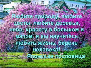 Любите природу, любите цветы, любите деревья, небо, красоту в большом и малом