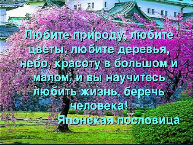 Любите природу, любите цветы, любите деревья, небо, красоту в большом и малом...