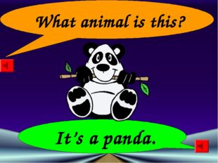 What animal is this? It's a panda.