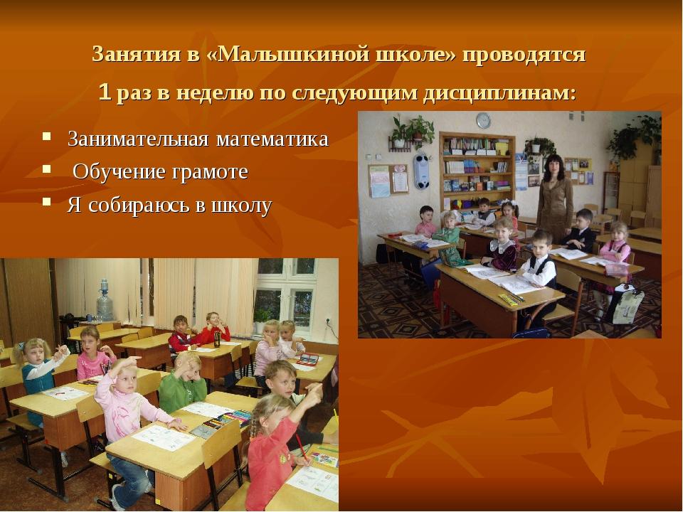 Занятия в «Малышкиной школе» проводятся 1 раз в неделю по следующим дисципли...