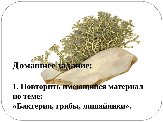 Домашнее задание: 1. Повторить имеющийся материал по теме: «Бактерии, грибы,...