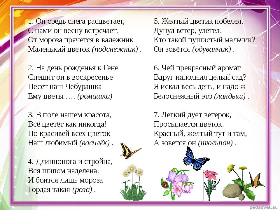 1. Он средь снега расцветает, С нами он весну встречает. От мороза прячется в...