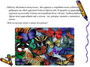 - Бабочки являются насекомыми. Эти хрупкие и очаровательные создания, радующи