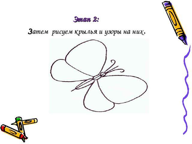 Этап 2: Затем рисуем крылья и узоры на них.
