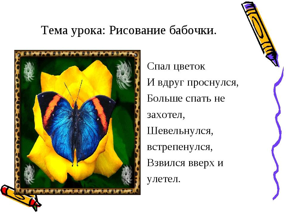 Тема урока: Рисование бабочки. Спал цветок И вдруг проснулся, Больше спать не...