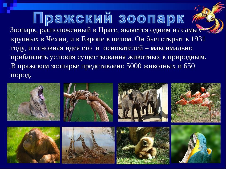 Зоопарк, расположенный вПраге, является одним из самых крупных в Чехии, и в...