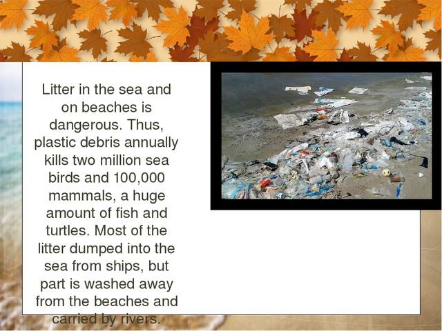 Litter in the sea and on beaches is dangerous. Thus, plastic debris annually...