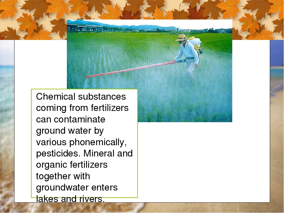 Chemical substances coming from fertilizers can contaminate ground water by v...