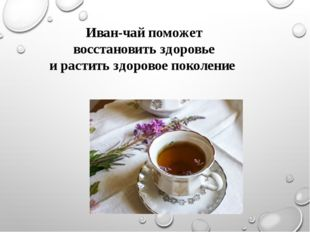 Иван-чай поможет восстановить здоровье и растить здоровое поколение