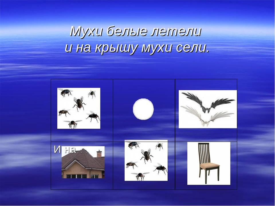 Мухи белые летели и на крышу мухи сели.  И на