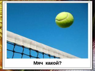 Мяч какой?