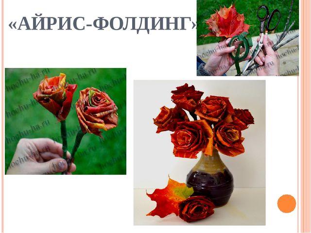 «АЙРИС-ФОЛДИНГ»