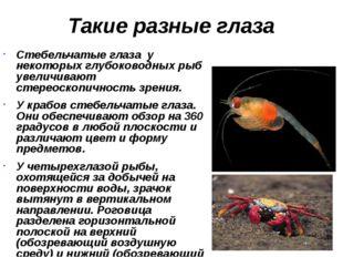 Такие разные глаза Стебельчатые глаза у некоторых глубоководных рыб увеличива