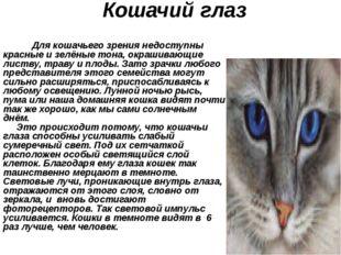 Кошачий глаз Для кошачьего зрения недоступны красные и зелёные тона, окрашива