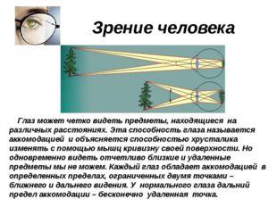 Зрение человека Глаз может четко видеть предметы, находящиеся на различных р