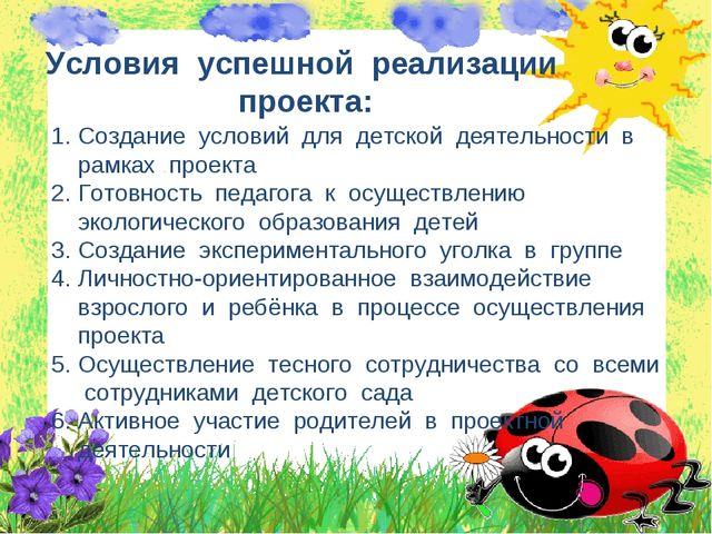 Условия успешной реализации проекта: Создание условий для детской деятельност...