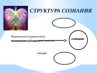 СТРУКТУРА СОЗНАНИЯ Правильное (адекватное) восприятие ( 5 органов чувств) эмо