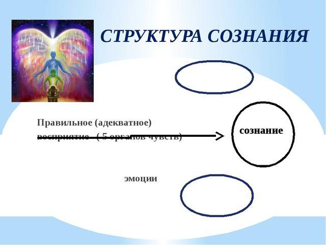 СТРУКТУРА СОЗНАНИЯ Правильное (адекватное) восприятие ( 5 органов чувств) эмо...