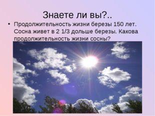 Знаете ли вы?.. Продолжительность жизни березы 150 лет. Сосна живет в 2 1/3 д