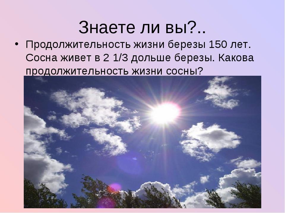 Знаете ли вы?.. Продолжительность жизни березы 150 лет. Сосна живет в 2 1/3 д...