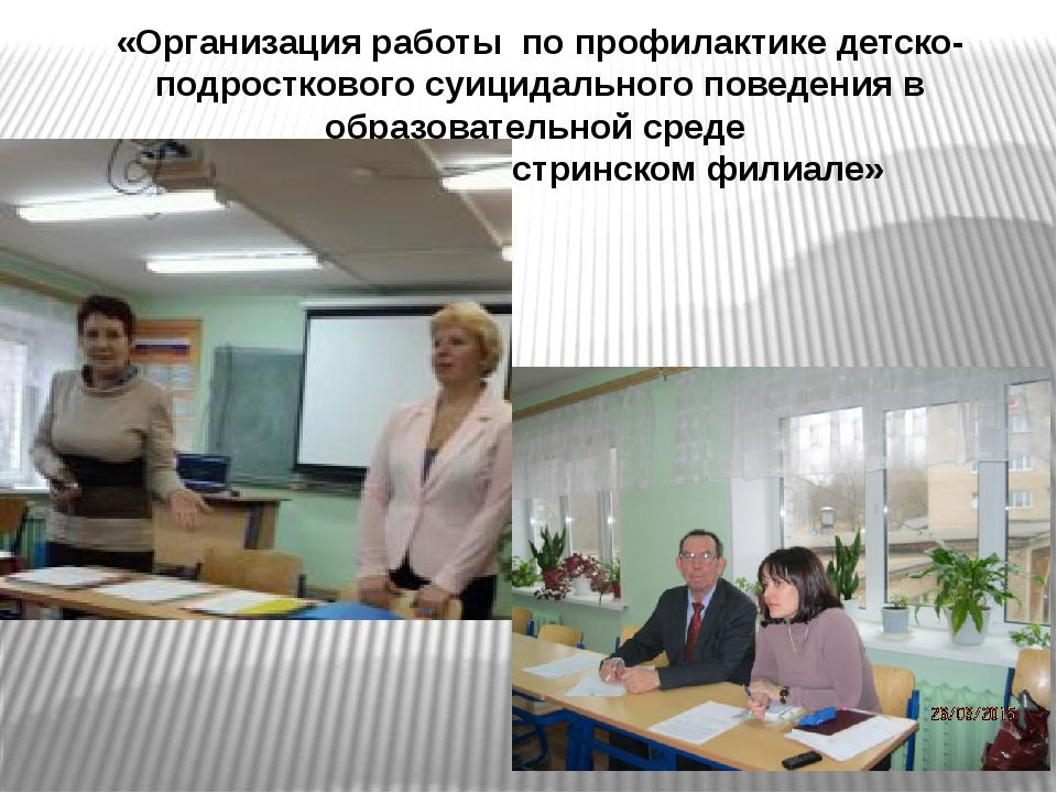 «Организация работы по профилактике детско-подросткового суицидального поведе...