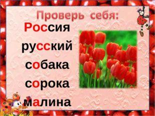 Россия русский собака сорока малина