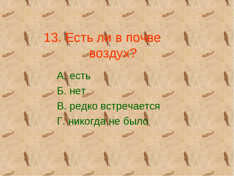13. Есть ли в почве воздух? А. есть Б. нет В. редко встречается Г. никогда не...