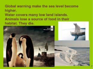 Global warning make the sea level become higher. Water covers many low land i