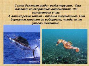Самая быстрая рыба– рыба-парусник. Она плавает со скоростью автомобиля- 100