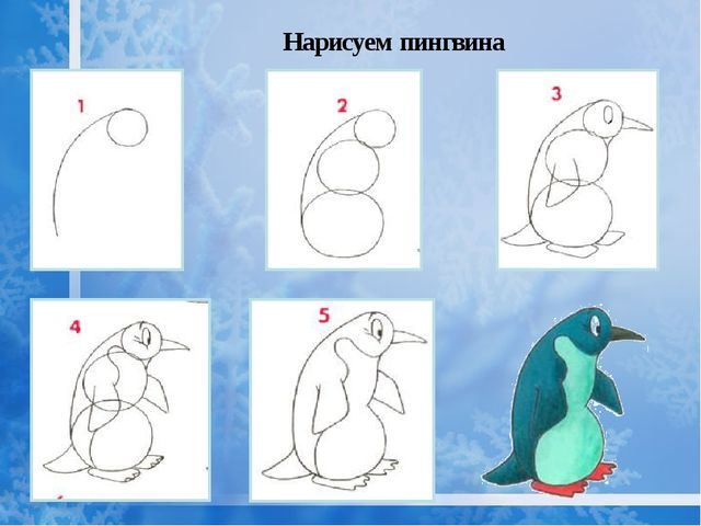 Нарисуем пингвина