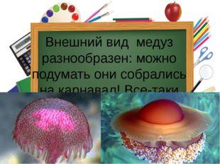 Внешний вид медуз разнообразен: можно подумать они собрались на карнавал! Вс