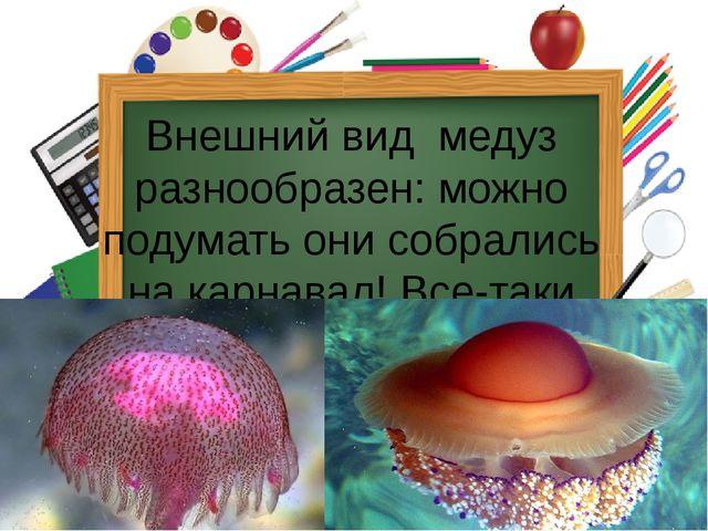 Внешний вид медуз разнообразен: можно подумать они собрались на карнавал! Вс...