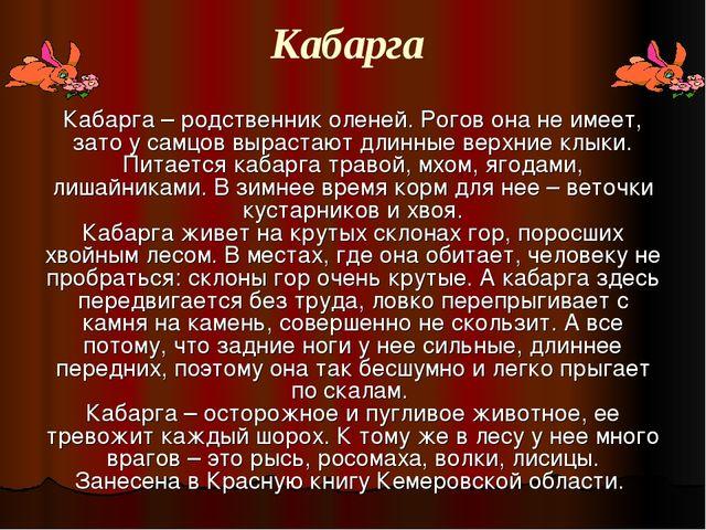 Кабарга Кабарга – родственник оленей. Рогов она не имеет, зато у самцов вырас...