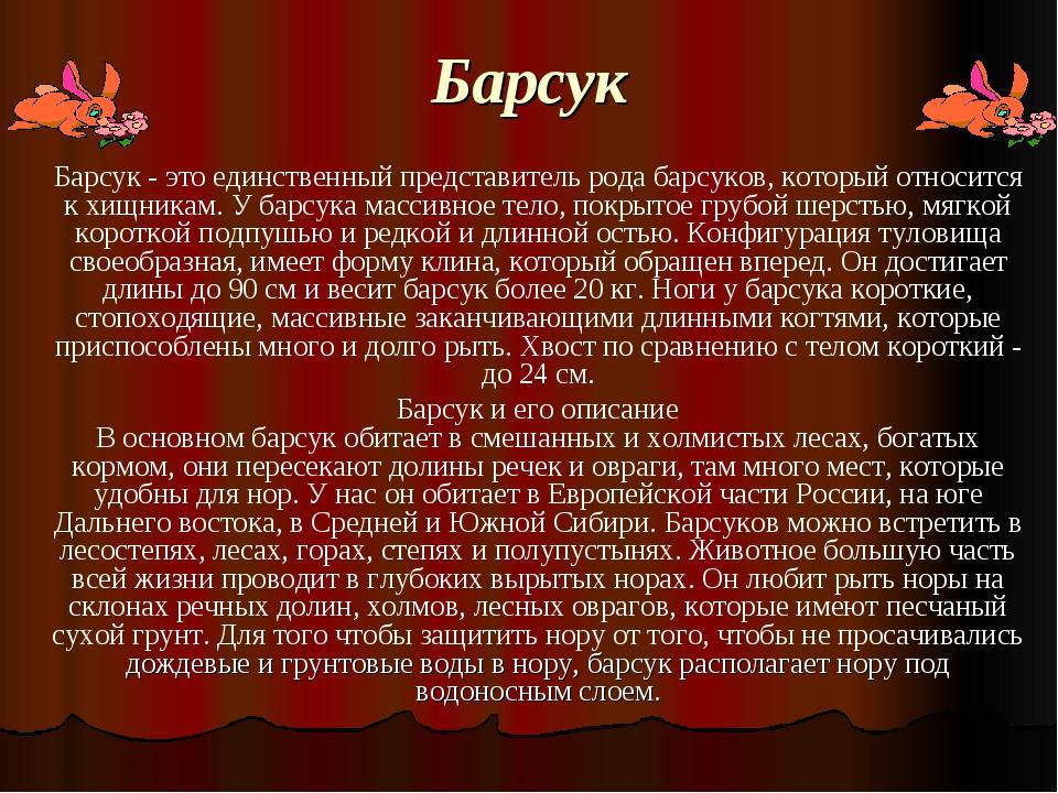Барсук Барсук - это единственный представитель рода барсуков, который относит...