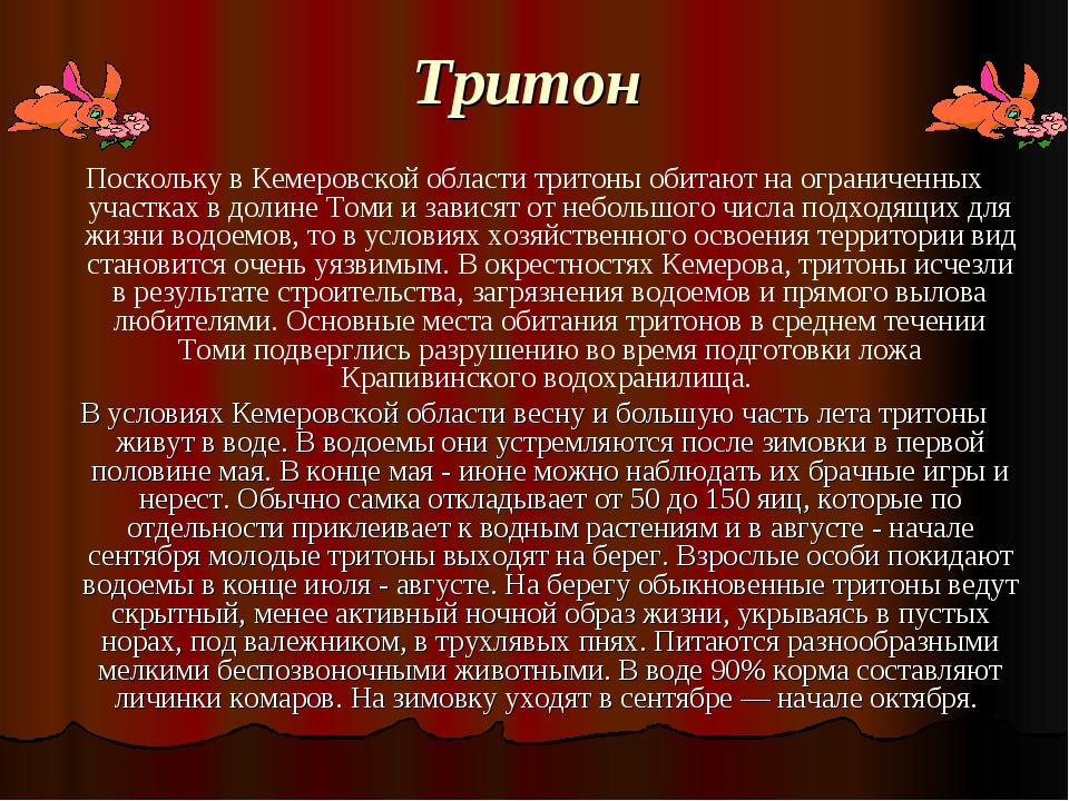 Тритон Поскольку в Кемеровской области тритоны обитают на ограниченных участ...