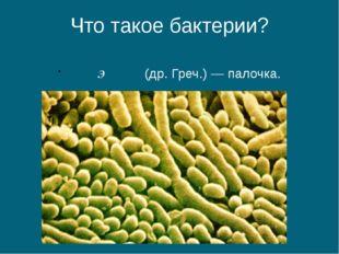 Что такое бактерии? βακτήριον (др. Греч.) — палочка.