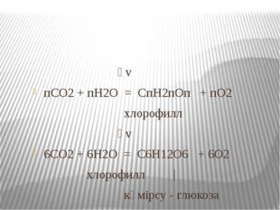 һv пСО2 + пН2О = СпН2пОп + пО2 хлорофилл һv 6СО2 + 6Н2О = С6Н12О6 + 6О2 хло
