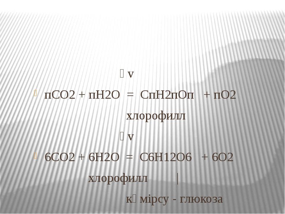 һv пСО2 + пН2О = СпН2пОп + пО2 хлорофилл һv 6СО2 + 6Н2О = С6Н12О6 + 6О2 хло...