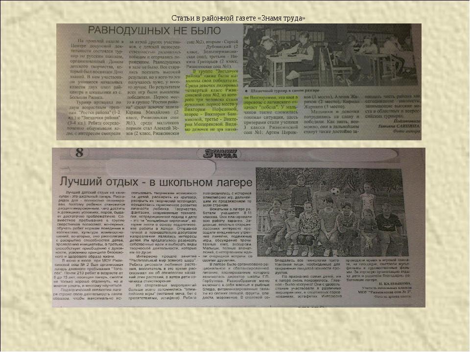 Статьи местной газете
