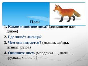 1. Какое животное лиса? (домашнее или дикое) 2. Где живёт лисица? 3. Чем она