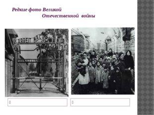 Редкие фото Великой Отечественной войны Над входом в Освенцим висел лозунг «Т