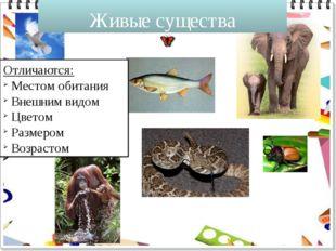 Живые существа Отличаются: Местом обитания Внешним видом Цветом Размером Возр