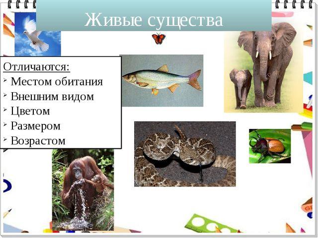 Живые существа Отличаются: Местом обитания Внешним видом Цветом Размером Возр...
