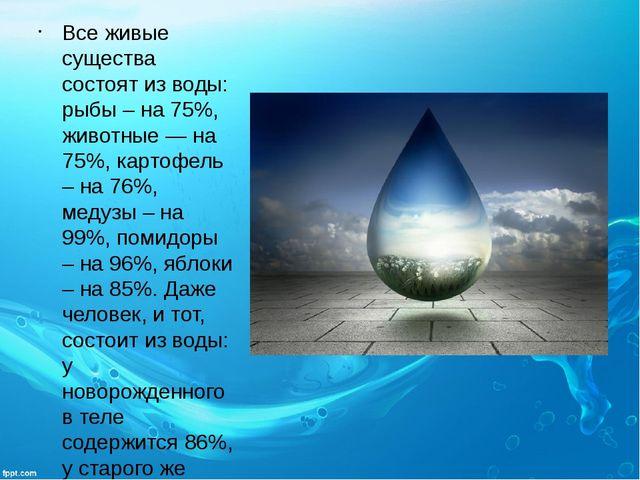 Все живые существа состоят из воды: рыбы – на 75%, животные — на 75%, картофе...