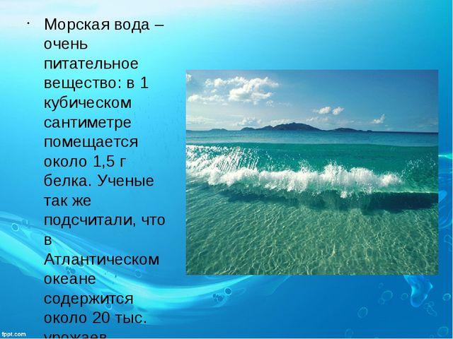 Морская вода – очень питательное вещество: в 1 кубическом сантиметре помещает...